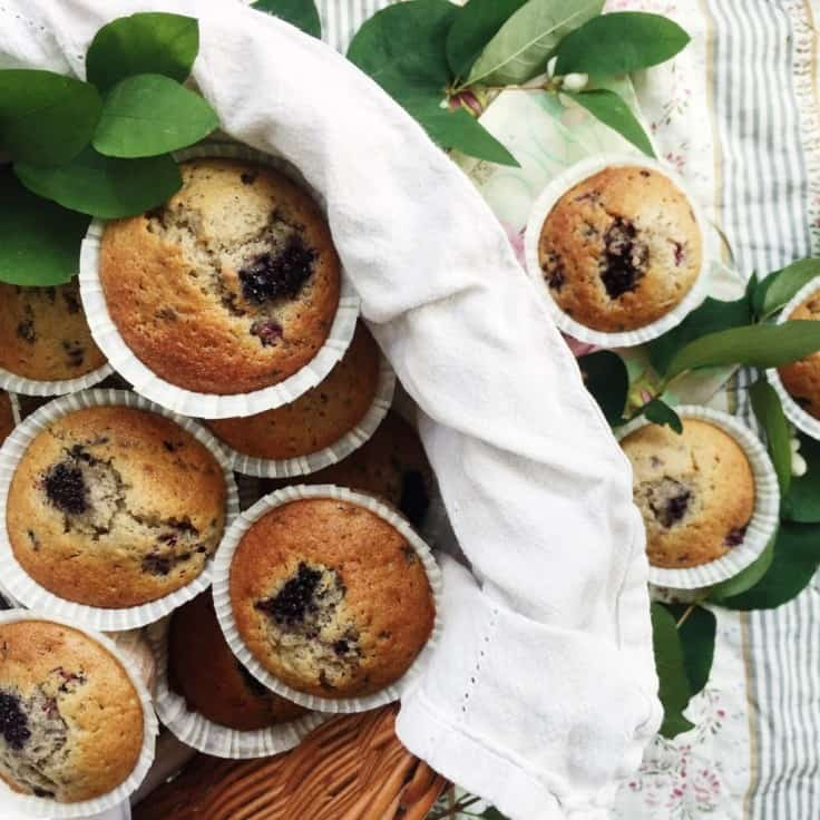 Brombærmuffins – hjemmelavet bærmuffins