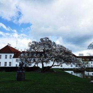 Odense slot