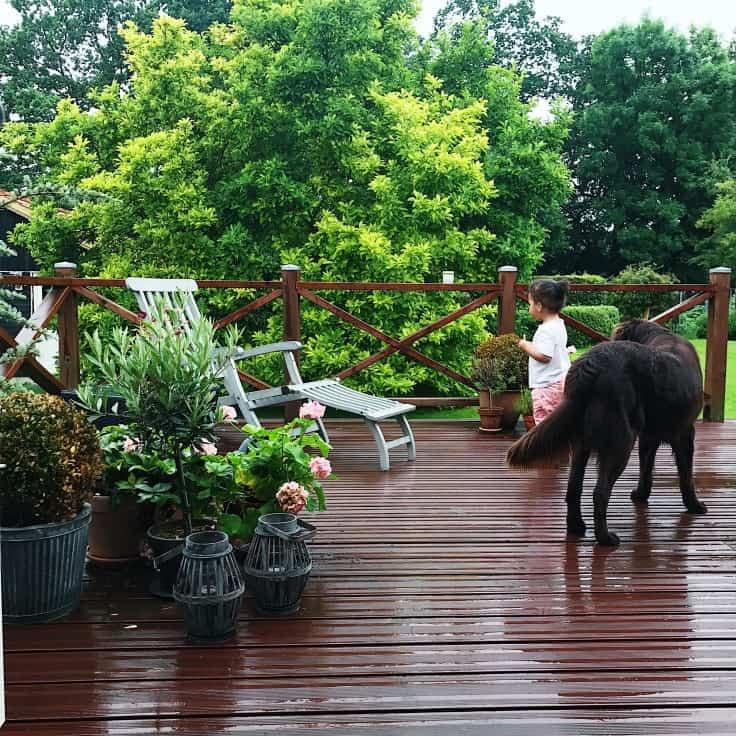 Nordisk picnic, startvanskeligheder og regnvejrsdans