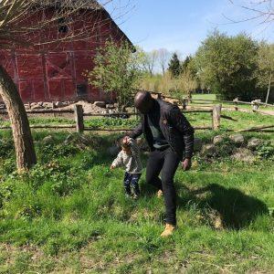 Den fynske landsby grise