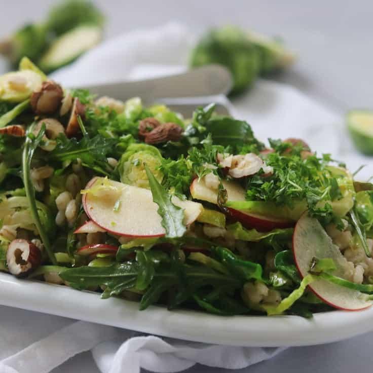 Rosenkålssalat – sprød salat med perlebyg