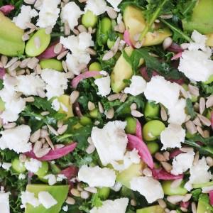 Salat og syltede rødløg