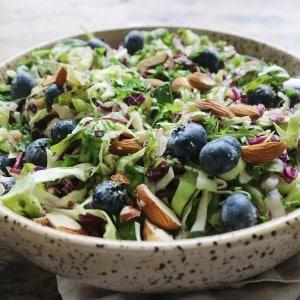 Salat med spidskål