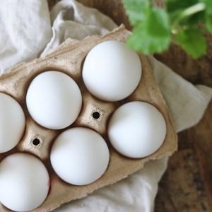 Æg i æggebakke